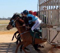 carreras de caballos salida
